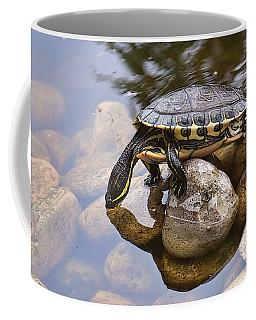 Turtle Drinking Water Coffee Mug