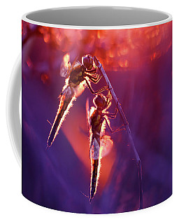 Two Can Keep A Secret - Dragonflies At Sunset Coffee Mug