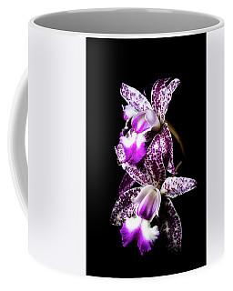 Two Cattleyas Coffee Mug