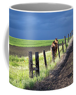 Two Horses In The Palouse Coffee Mug