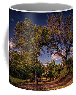 Two Old Oak Trees At Sunset Coffee Mug