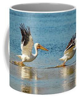 Two Pelicans Taking Off Coffee Mug