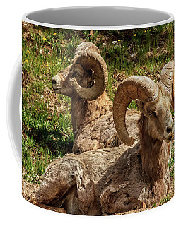 Two Resting Bighorn Sheep Coffee Mug
