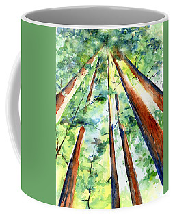 Up Through The Redwoods Coffee Mug