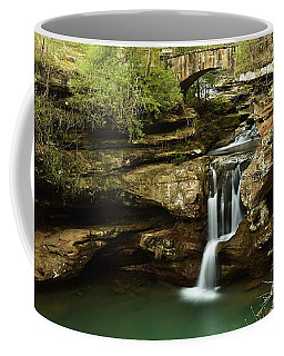 Upper Falls Overview Coffee Mug