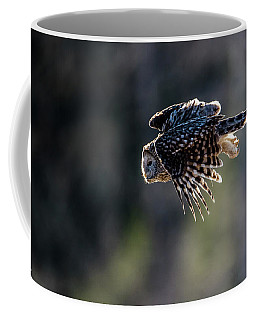 Ural Owl Flying Against The Light To Catch A Prey  Coffee Mug