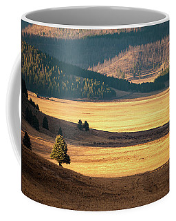 Valles Caldera Detail Coffee Mug