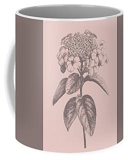 Viburnum Blush Pink Flower Coffee Mug
