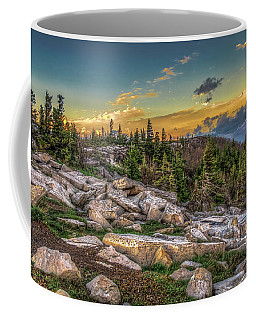 View From Dolly Sods 4714 Coffee Mug
