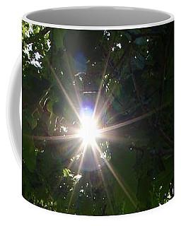 Vineyard In Georgia Coffee Mug
