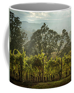 Vineyard Sunset Coffee Mug