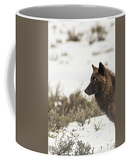 Coffee Mug featuring the photograph W11 by Joshua Able's Wildlife