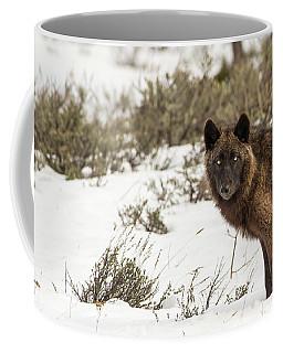 W12 Coffee Mug