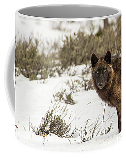 Coffee Mug featuring the photograph W12 by Joshua Able's Wildlife