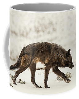 Coffee Mug featuring the photograph W13 by Joshua Able's Wildlife