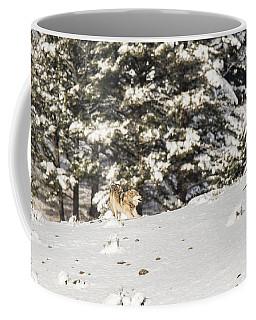 W14 Coffee Mug