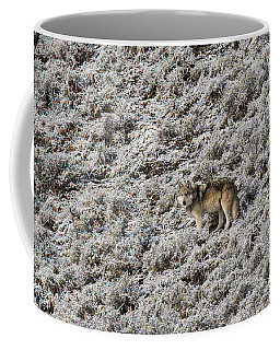 Coffee Mug featuring the photograph W17 by Joshua Able's Wildlife