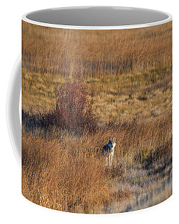 W2 Coffee Mug