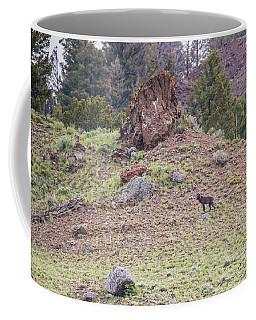 W21 Coffee Mug