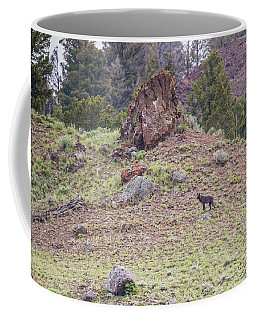 Coffee Mug featuring the photograph W21 by Joshua Able's Wildlife