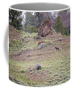 W22 Coffee Mug