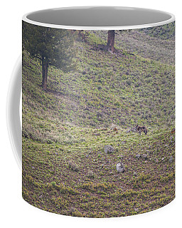 Coffee Mug featuring the photograph W25 by Joshua Able's Wildlife