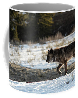 Coffee Mug featuring the photograph W27 by Joshua Able's Wildlife