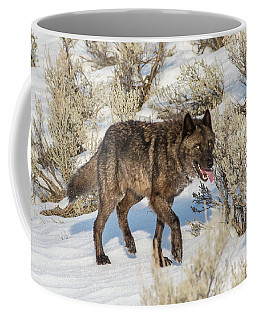 Coffee Mug featuring the photograph W28 by Joshua Able's Wildlife