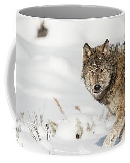 W35 Coffee Mug