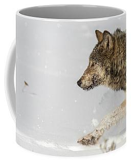 W36 Coffee Mug