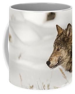 W37 Coffee Mug