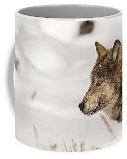 Coffee Mug featuring the photograph W37 by Joshua Able's Wildlife
