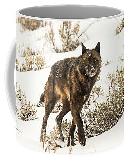 Coffee Mug featuring the photograph W38 by Joshua Able's Wildlife