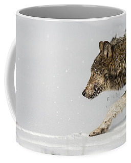 Coffee Mug featuring the photograph W40 by Joshua Able's Wildlife