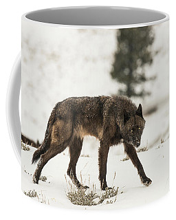 Coffee Mug featuring the photograph W42 by Joshua Able's Wildlife