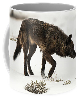 Coffee Mug featuring the photograph W47 by Joshua Able's Wildlife