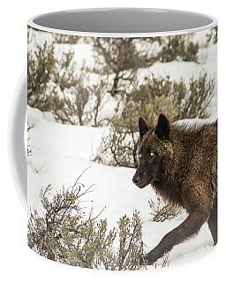 W5 Coffee Mug