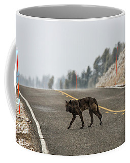Coffee Mug featuring the photograph W55 by Joshua Able's Wildlife