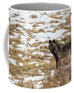 W59 Coffee Mug