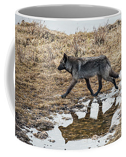 Coffee Mug featuring the photograph W60 by Joshua Able's Wildlife