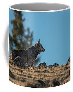 Coffee Mug featuring the photograph W61 by Joshua Able's Wildlife