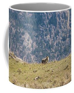 W62 Coffee Mug