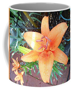 Waiting Lily  Coffee Mug