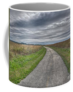Walnut Woods Pathway - 1 Coffee Mug