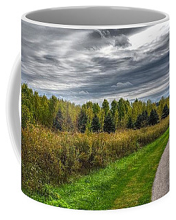 Walnut Woods Pathway - 2 Coffee Mug
