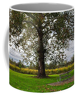 Walnut Woods Tree - 1 Coffee Mug