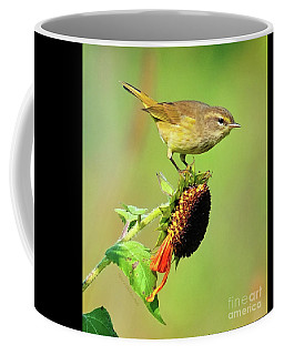 Coffee Mug featuring the photograph Warbler by Debbie Stahre