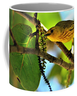 Warbler's Delight Coffee Mug