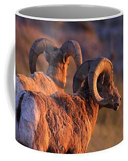 Warm Touch Coffee Mug