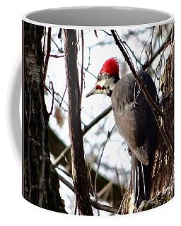 Warypileated Coffee Mug